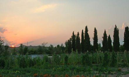 Restauración agroecológica Casa Mauro