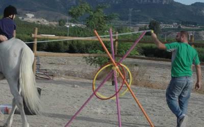 El caballo como herramienta de trabajo en la discapacidad