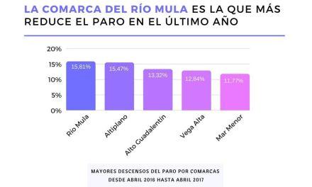 Las comarcas del río Mula y del Altiplano lideran el descenso del paro en el último año
