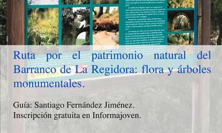 Excursión el domingo 28 de mayo al Barranco de la Regidora de Bullas