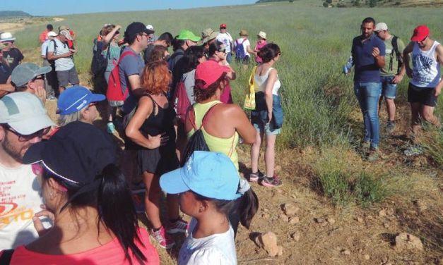 Una ruta para realzar la belleza de los paisajes moratalleros y sus valores naturales y antropológicos