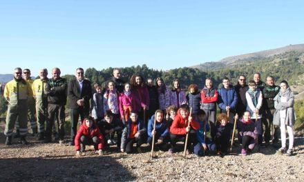 Unos 200 escolares del Cervantes participan una actividad de reforestación, dentro del proyecto 'La vida secreta de los árboles'