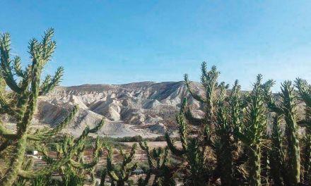 Los barrancos desérticos son una alternativa turística con un gran valor paisajístico y de ocio
