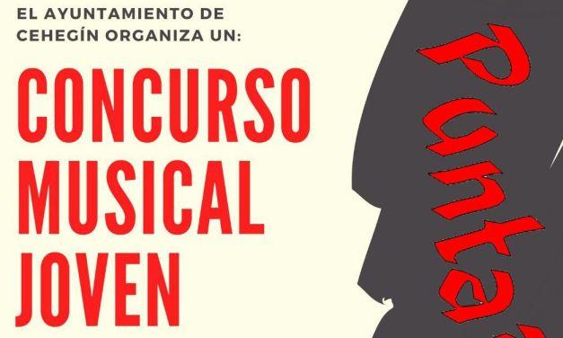 El 9 de Junio se celebrará el festival de grupos locales PuntaRock