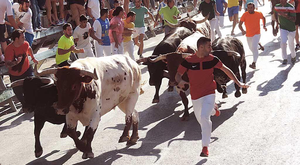 «Lo principal es el respeto por el toro y por los compañeros», Antonio García García, corredor de encierros
