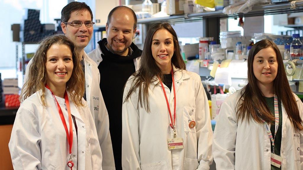 """""""Divulgar es una forma de devolver a la sociedad lo que ésta invierte en este tipo de investigaciones"""", María Martínez-López, quien forma parte del equipo del Centro Nacional de Investigaciones Cardiovasculares"""