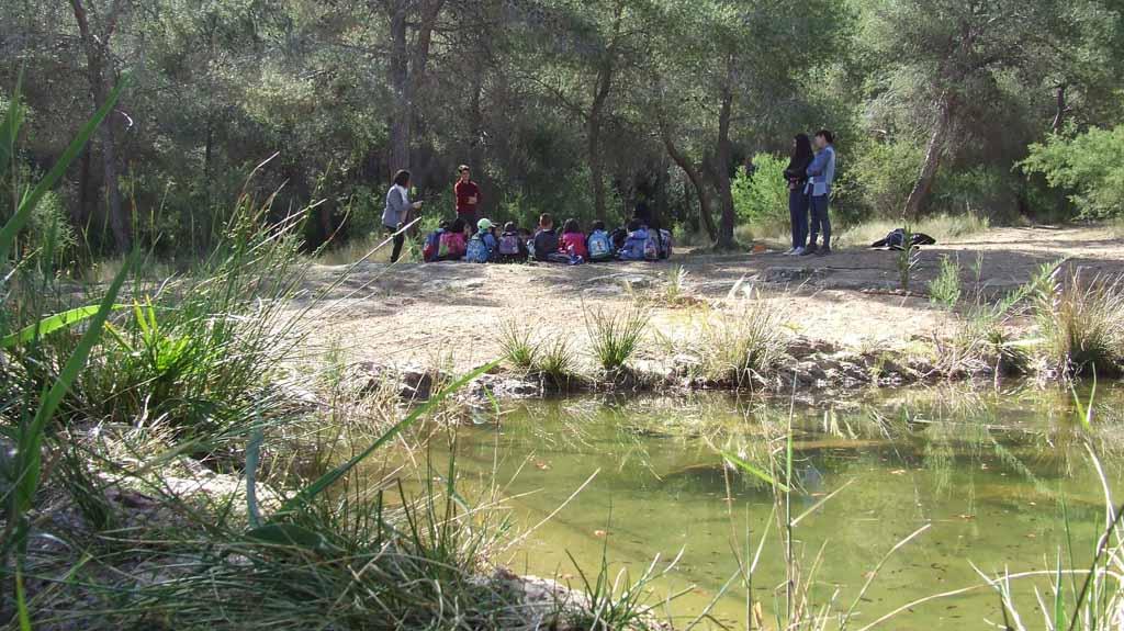 Medio Ambiente organiza talleres, visitas y rutas guiadas y un concierto para conmemorar el Día Europeo de los Parques