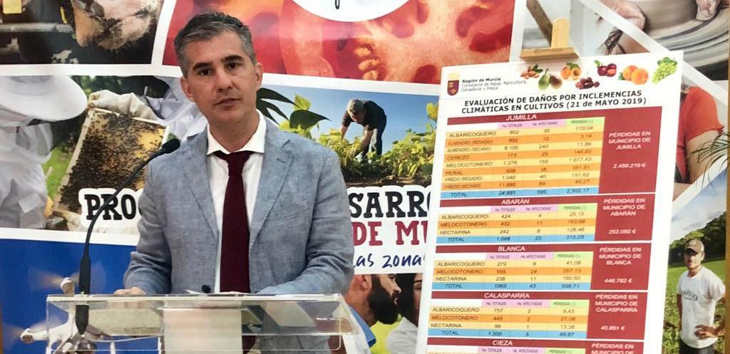 Agricultura cifra en pérdidas de 40.861 euros los daños por el granizo en Calasparra
