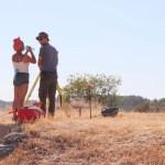Veinte alumnos de distintas universidades participan en la excavación arqueológica de Begastri