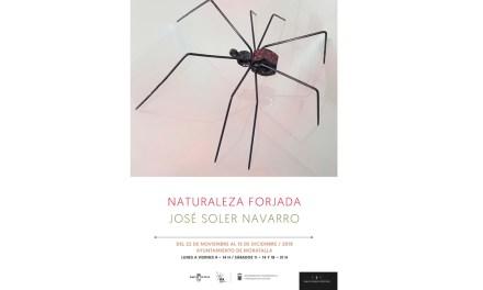 """La exposición """"NATURALEZA FORJADA"""", de José Soler Navarro, se podrá visitar en el Ayuntamiento de Moratalla hasta el próximo 15 de diciembre."""