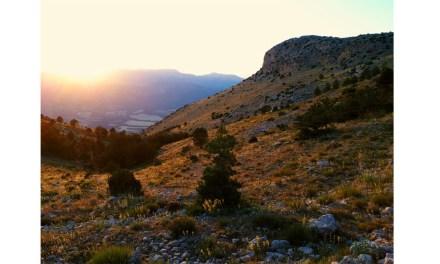 La marca 'Territorio Sierra Espuña', presente un año más en Fitur