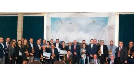 1 Gran Oro, 14 Oros y 3 Platas son los galardones otorgados a los vinos premiados por su calidad en el XIII de Calidad de Vinos DOP Bullas
