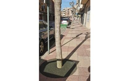 El Ayuntamiento de Cehegín mejora la seguridad de los vecinos con el arreglo de alcorques