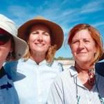 El hallazgo más importante del 2019 en la Región de Murcia