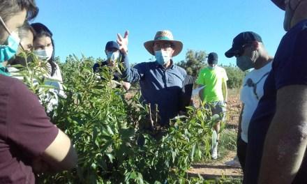 15 jóvenes agricultores se forman en el Noroeste para crear empresas agrarias