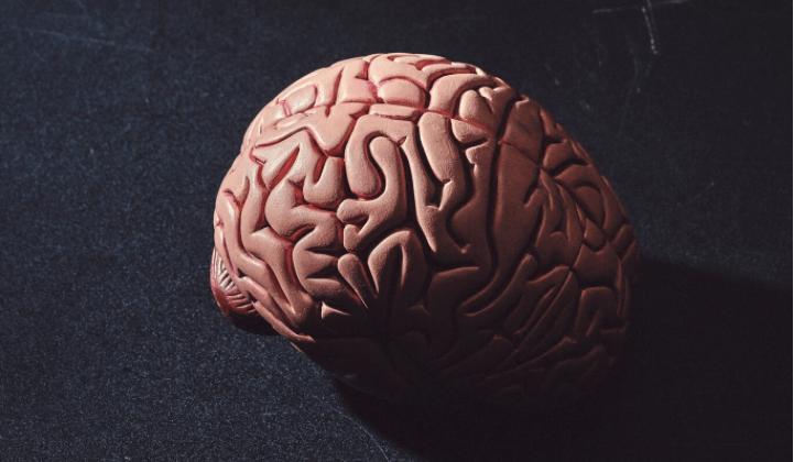 Opinión: La velocidad de la tecnología atropella nuestros cerebros