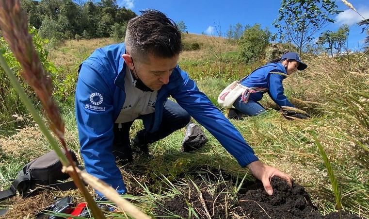 Siembran 300 árboles en reserva natural del páramo de Guerrero