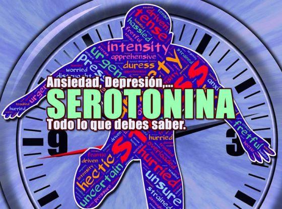 serotonina lo que debes saber