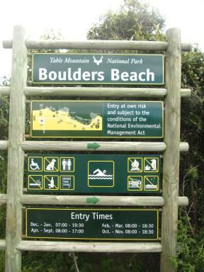 Boulders Beach: L'ile aux manchots