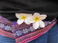 fleurs glissées dans la ceinture de mon pantalon par des petites filles