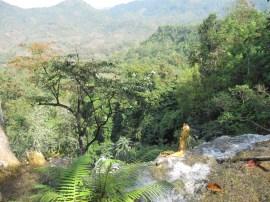 David a eu le courage d'escalader jusqu'au sommet de la cascade !