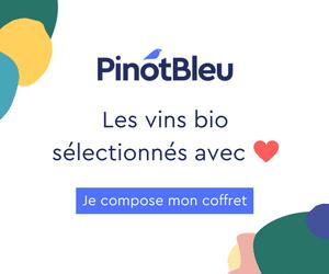 pinot bleu box vin bio