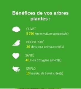 Voici les bénéfices de 10 arbres plantés en Haïti avec Reforest'Action, pour 30€ !