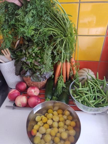 Potager city panier fruits et légumes se saison biologique locaux livrés paris ville chaque semaine