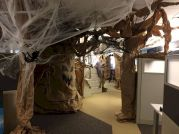 Inspiring Decoration Ideas of Halloween Cubical Office (13)