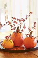 Thanksgiving Celebration Dining Table Centerpieces Idea Part 24