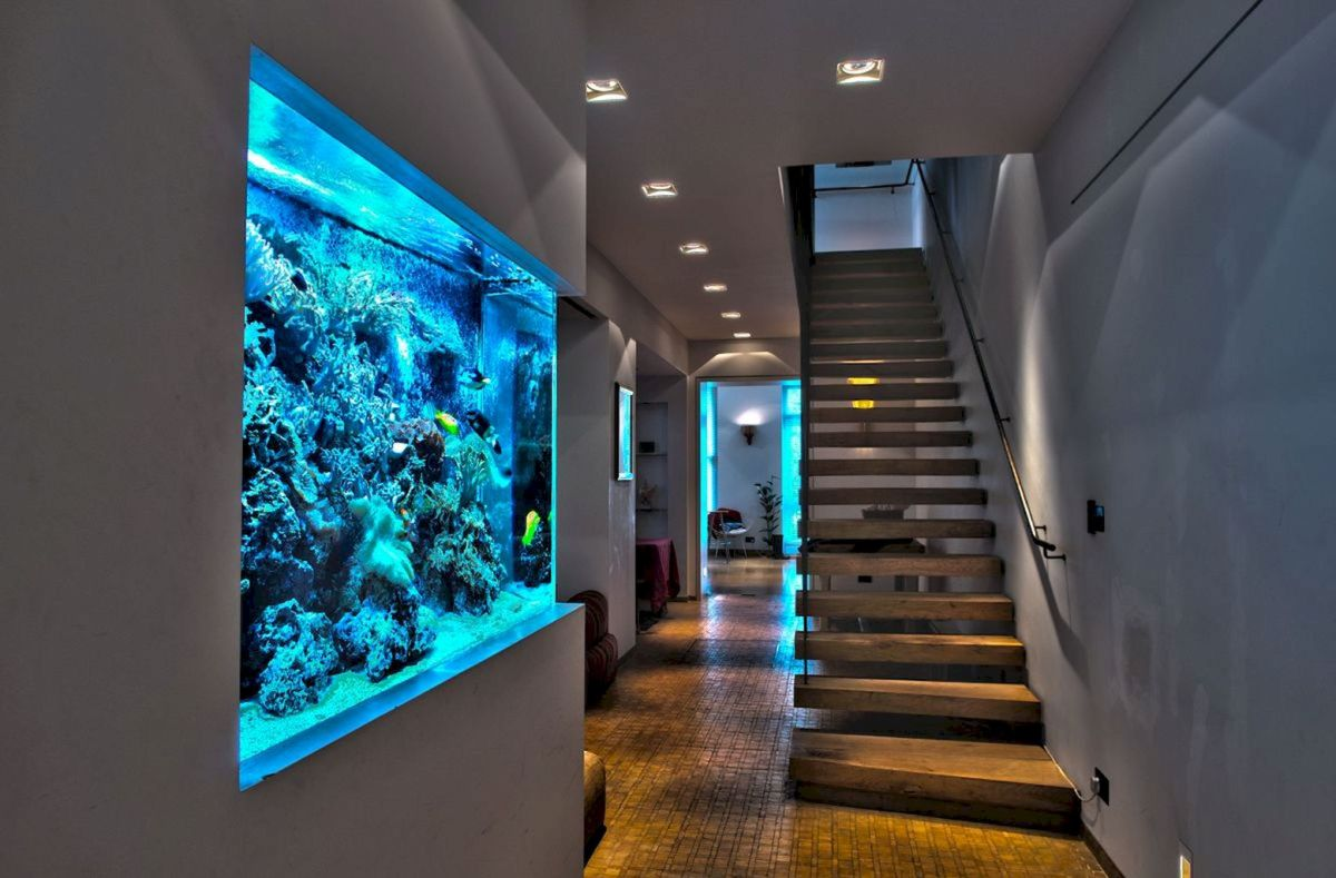 Creative Wall Auarium designs For Home Decoration and Amazing Room Separator Part 17
