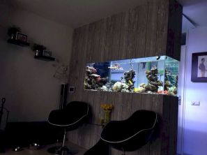 Creative Wall Auarium designs For Home Decoration and Amazing Room Separator Part 3