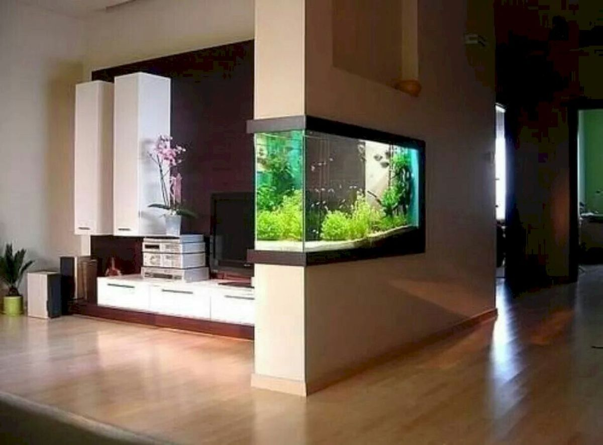 Exotic Wall Mounted Aquarium Giving Better Mood Everyday Part 32