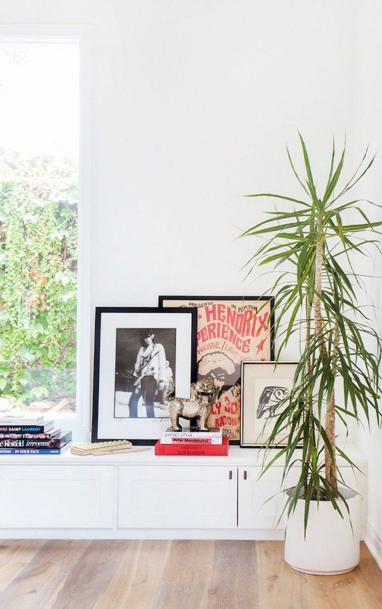 Lively Living Room Vibe with Indoor Plant Decoration Part 23
