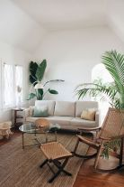 Lively Living Room Vibe with Indoor Plant Decoration Part 43
