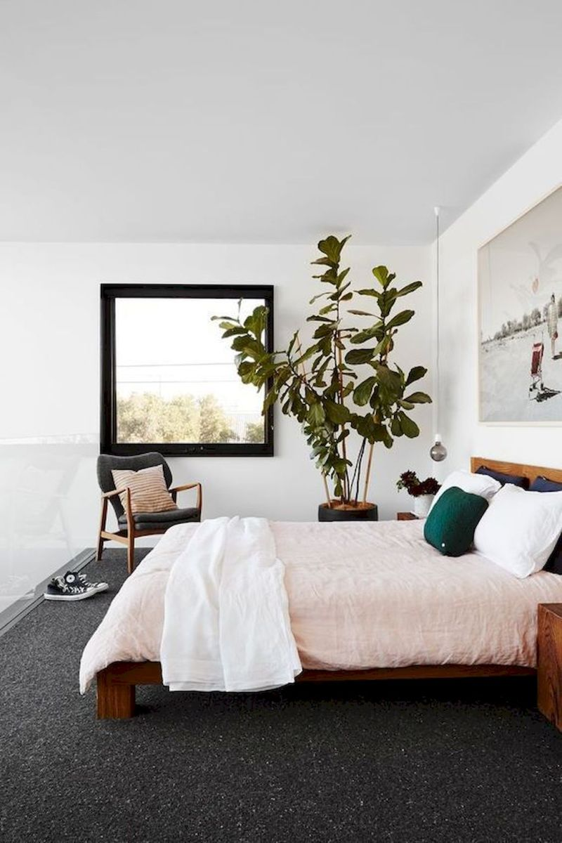 Living Plant Decoration for Cozy Bedroom Atmosphere Part 12