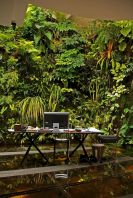 Tropical Decoration Concept with Living Plants Decoration Part 44