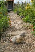 Exotic traditional style of graveled garden walkways that add more natural vibes in your garden designs Part 18