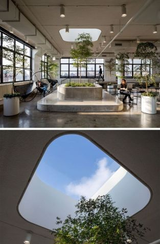 Modern Office Design with Healthy Natural Ideas That Increases Productivity Part 8