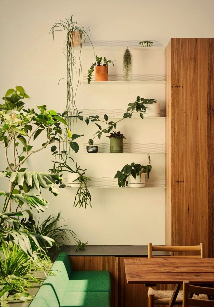 Modern wooden kitchen model with adjustable transparent roof to support indoor garden improving more natural vibe (5)