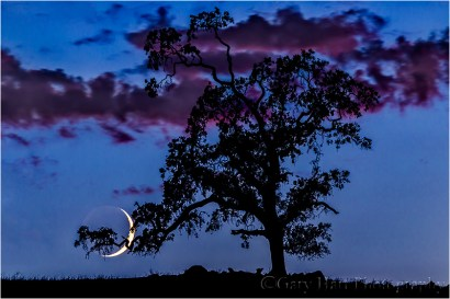 Goodnight Moon, Sierra Foothills, California