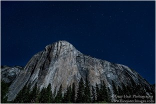 Gary Hart Photography: El Capitan and the Big Dipper, El Capitan Meadow, Yosemite