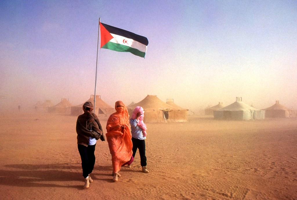 Un año clave para el Sáhara