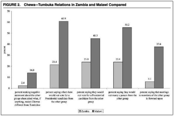 Los habitantes malauíes tuvieron respuestas negativas sobre las diferencias entre chewas y tumbukas, votar a un candidato del otro grupo étnico o casarse con un miembro de la otra etnia. Fuente: American Political Science Review