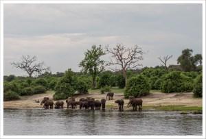 Botsuana: ¿milagro africano?