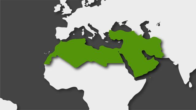 Oriente Próximo y el Magreb en 2019