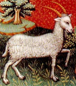 Earthlore Explorations Lore of Astrology Capricorn: 15th Century Manuscript Detail of Capricorn