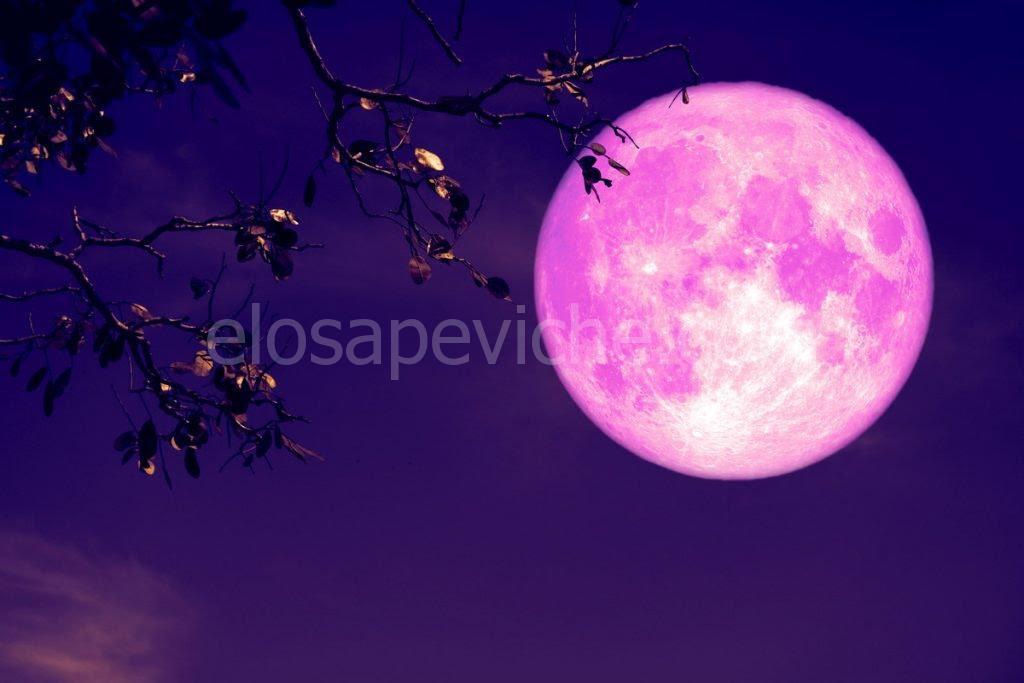 Stasera la luna diventa di fragola: una bellissima eclissi!!