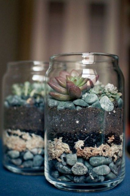 13 Beautiful Plants In Jars Garden You're Going To Fall In Love 01