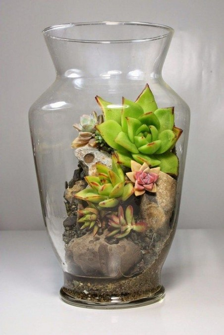 13 Beautiful Plants In Jars Garden You're Going To Fall In Love 25